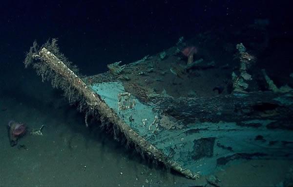 Monterrey Shipwreck Bow